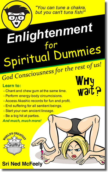 Enlightenment for Spiritual Dummies by Sri Ned McFeely
